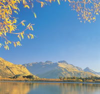Fall foliage in New Zealand