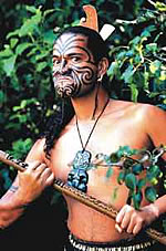 New Zealand Maori Man in Traditional warrior pose